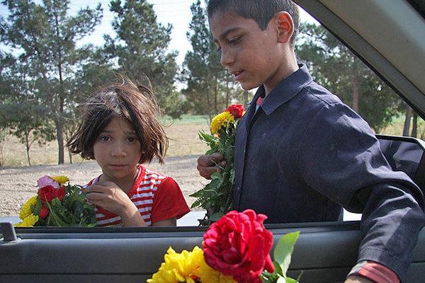 کودکان کار و متکدیان در سطح شهر بوشهر ساماندهی شوند