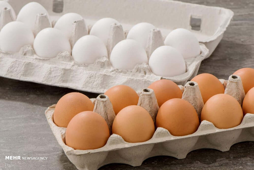 الزام عرضه تخم مرغ بسته بندی لغو شد